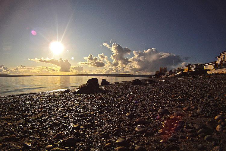 23-3-tree-point-beach