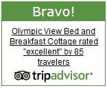 TripAdvisor Bravo Award